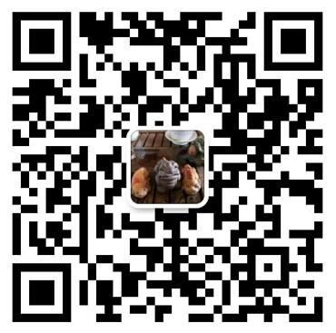 LD乐动体育官网乐动投注平台二维码